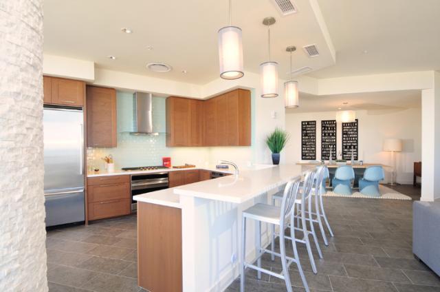 Penthouse kitchen 44 monroe condos