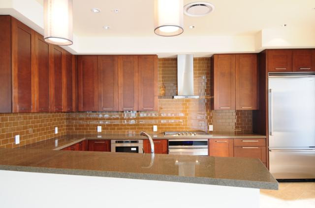 Penthouse kitchen2 44 monroe condos