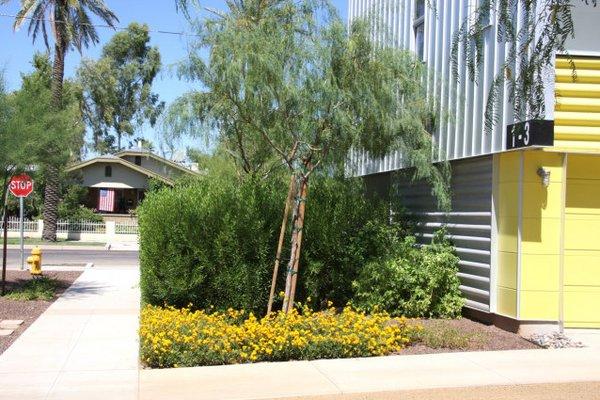 Garden prd 845 rowhomes